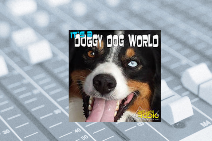 It's A Doggy Dog World with Liz Palika, Petra Burke and Kate Abbott