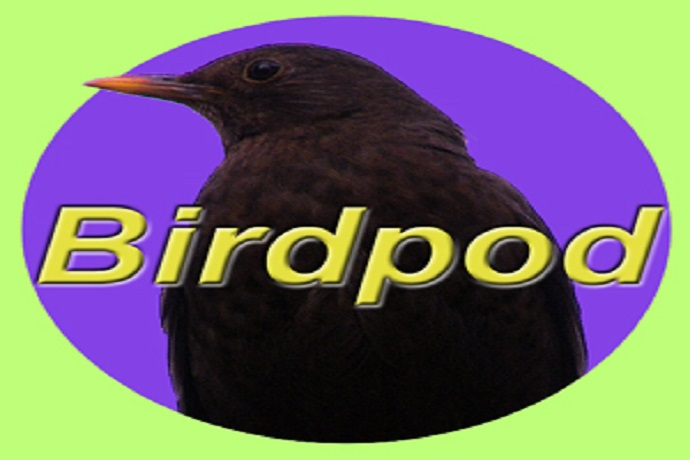 Birdpod by Neil Baxter
