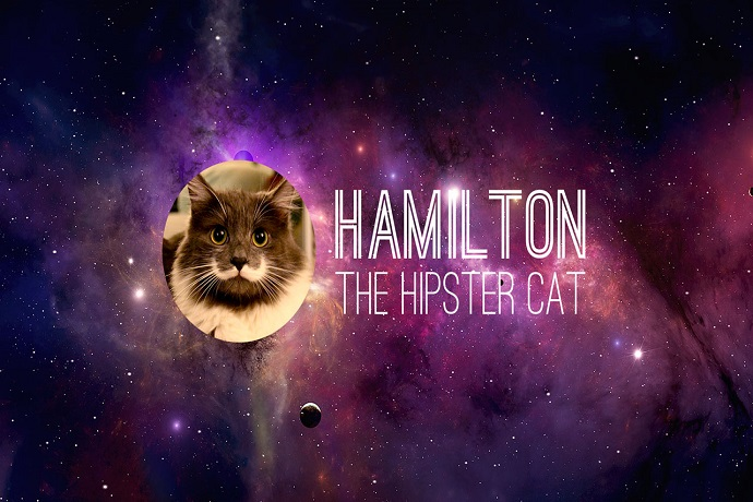 Before It Was Cool with Hamilton The Hipster Cat