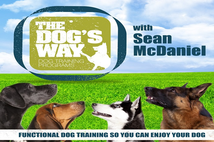 The Dog's Way Podcast with Sean McDaniel
