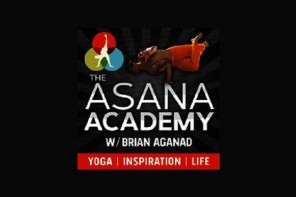 The Asana Academy Podcast Image